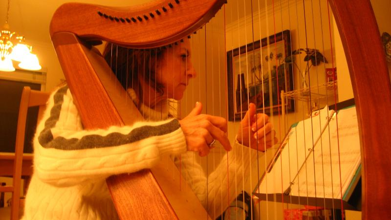 Jenny Solomon plays the harp to stay happy during the winter.