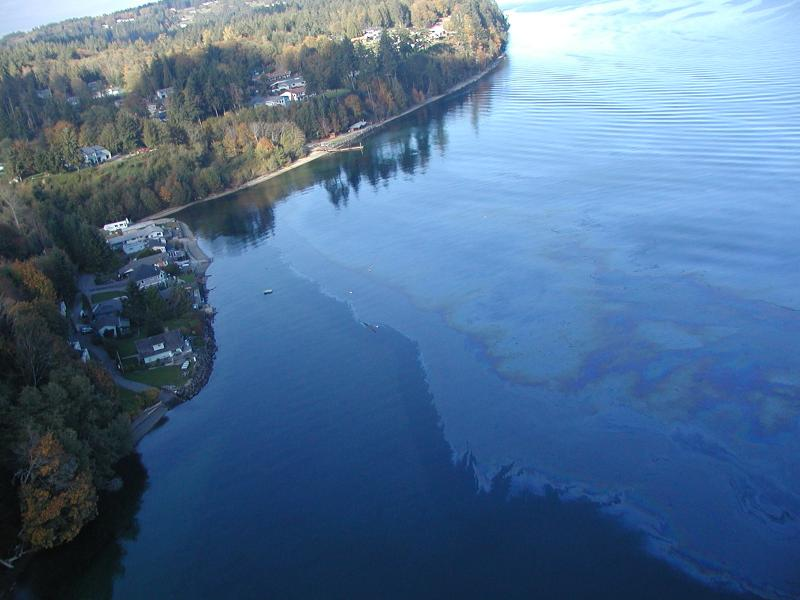 On Oct. 13, 2004, about 7,000 gallons of crude oil spilled from a ConocoPhillips oil tanker. The slick spread quickly and covered much of Colvos and Dalco Passage and Quartermaster Harbor in Puget Sound.