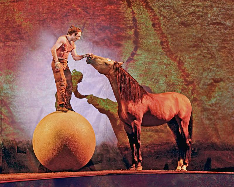 """Cavalia: A Magical Encounter Between Human and Horse"" combines equestrian and performing arts as well as live music and more than 40 horses."