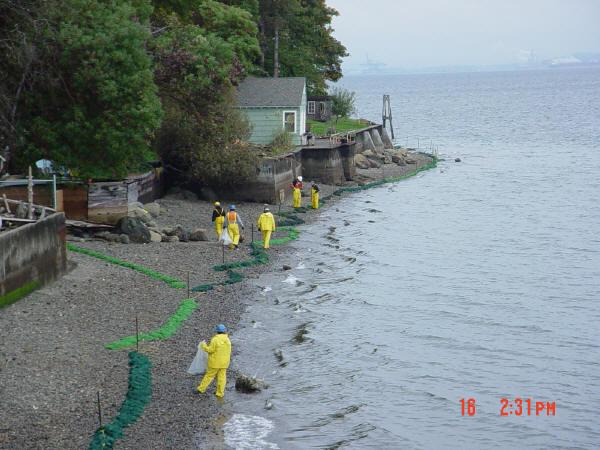 Crews work to clean up beach on Vashon Island after a ConocoPhillips oil tanker spilled up to 7,200 gallons of crude on Oct. 13, 2004. About 59 tons of oily debris was removed from Puget Sound shorelines, especially Vashon and Maury islands.