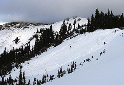 An avalanche near Hurricane Ridge in Olympic National Park