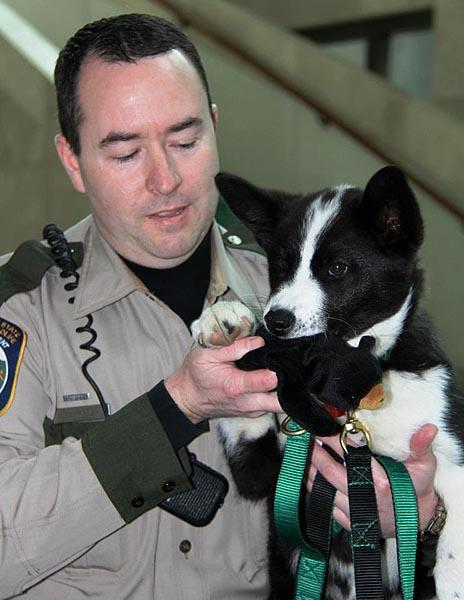 Officer Dustin Prater and his new partner Spencer. Yes, Spencer has a stuffed bear in his mouth