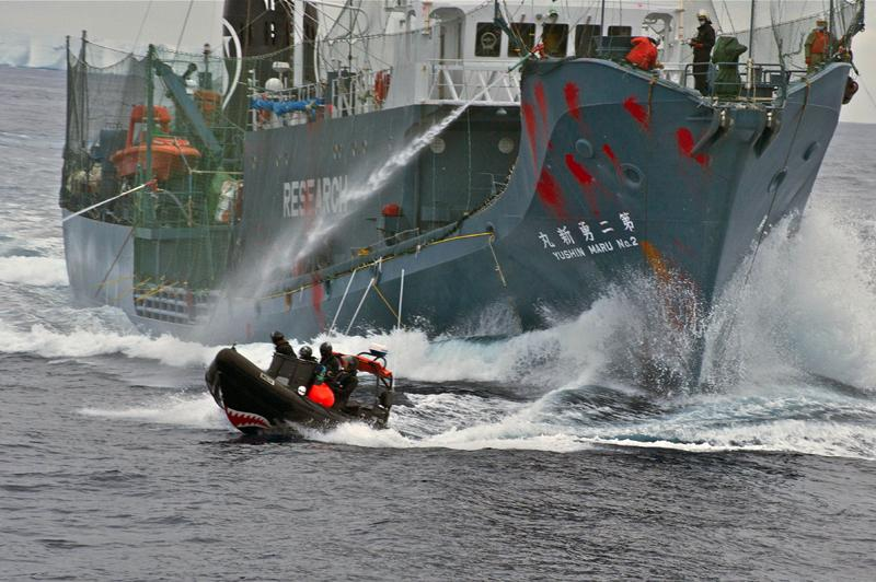 The Japanese whaling vessel Yushin Maru No. 2 shoots its water cannons at the Sea Shepherd crew on a inflatable boat on Feb. 12 during an encounter by the whalers and anti-whaling activists in the Antarctic Sea.