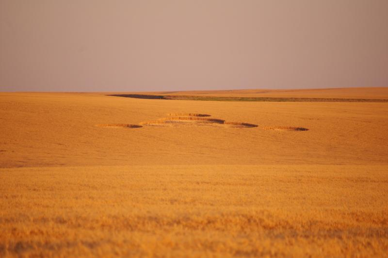 A view of the crop circles near Wilbur, Wash., take on Tuesday.