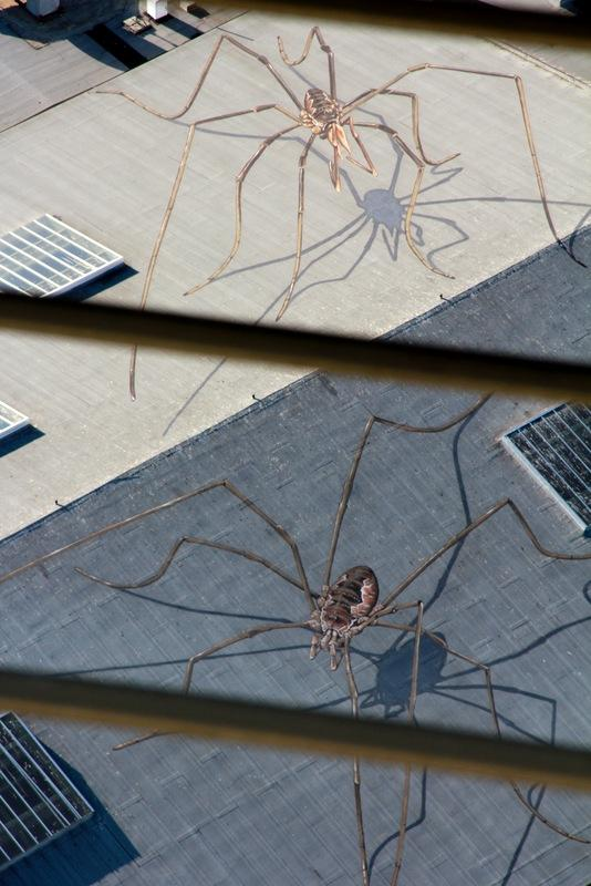 Two daddy longlegs on the roof of the Armory at the Seattle Center as seen from the Space Needle.