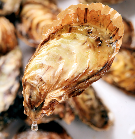 Pacific oysters in China are similar to the ones found on Washington beaches