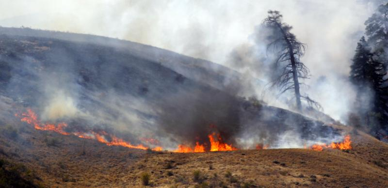 Flames burn at one end of a wildfire today near Wenatchee.