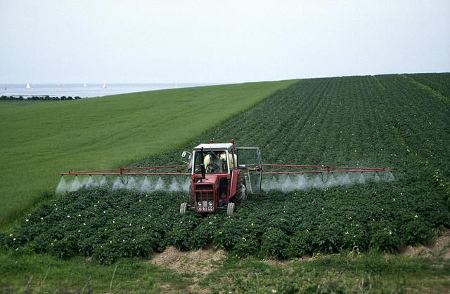 Pesticides sprayed on farm fields can run off into streams, potentially threatening fish.