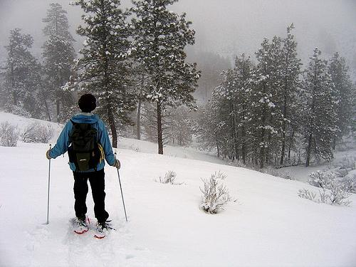 Recipe for fighting the winter blues? Get outside in the snow