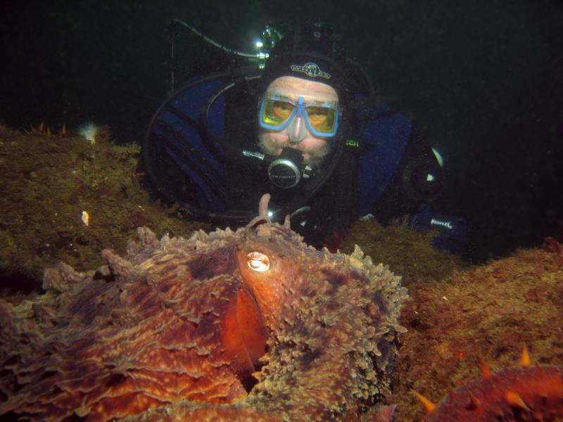 Tom Nicodemus enjoys a close encounter with a giant Pacific octopus