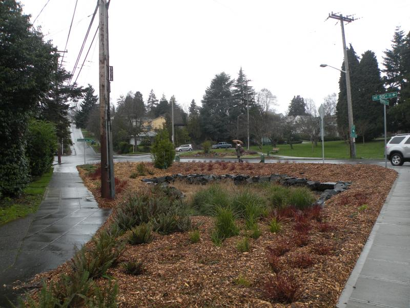 This bioswale in Seattle's Ravenna neighborhood manages about 80,000 gallons of stormwater annually. It was installed as part of a pedestrian improvement project and exemplifies how the city says it will reach its new ambitious goal.