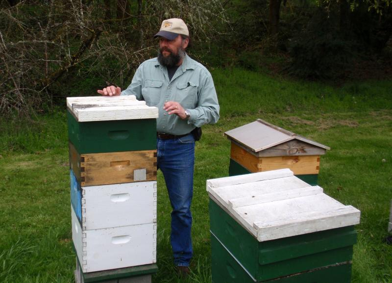 Beekeeper Mark Emrich checks his hives near Rochester, Wash.