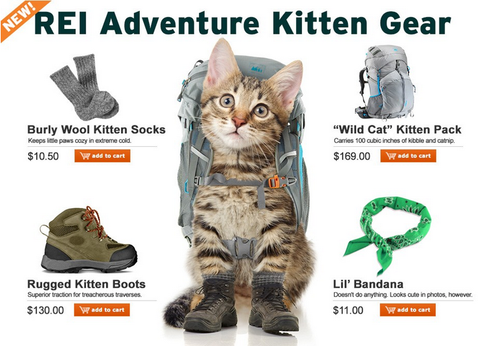 Finally, everything your rugged, outdoorsy kitty ever wanted.