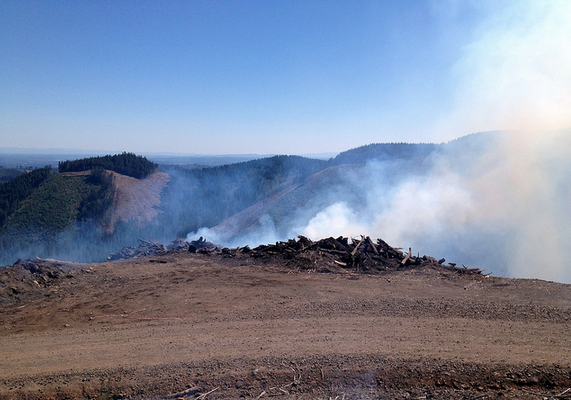 The C-Line fire is seen burning on Sunday, May 5, 2013.
