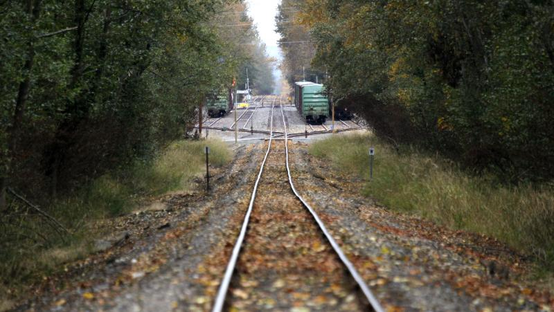 In this photo taken Oct. 23, 2012, train tracks run through a wooded area near the site of a proposed coal exporting terminal Tuesday, Oct. 23, 2012, in Ferndale, Wash., near Bellingham, Wash.