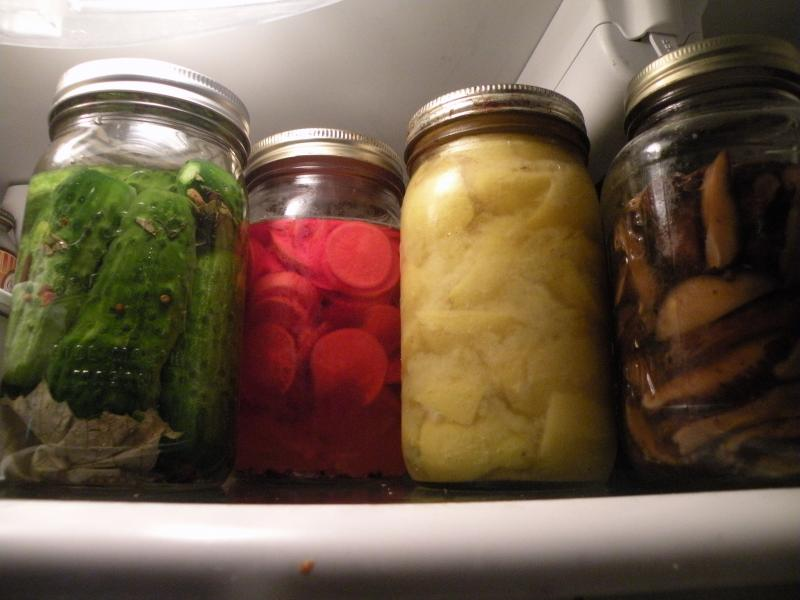Welcome to my 'fridge. L-R: Half-Sours, pickled radish, preserved lemon, pickled shitakes.