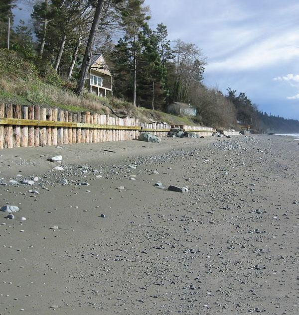 "Timber-pile bulkheads built to protect residential property from erosion on the west side of Whidbey Island, Puget Sound. This type of beach ""armoring"" can impact nearshore fish habitat."