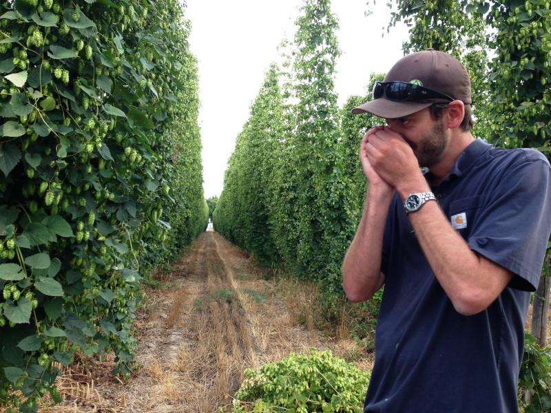 Patrick Smith is a fourth-generation hop grower.