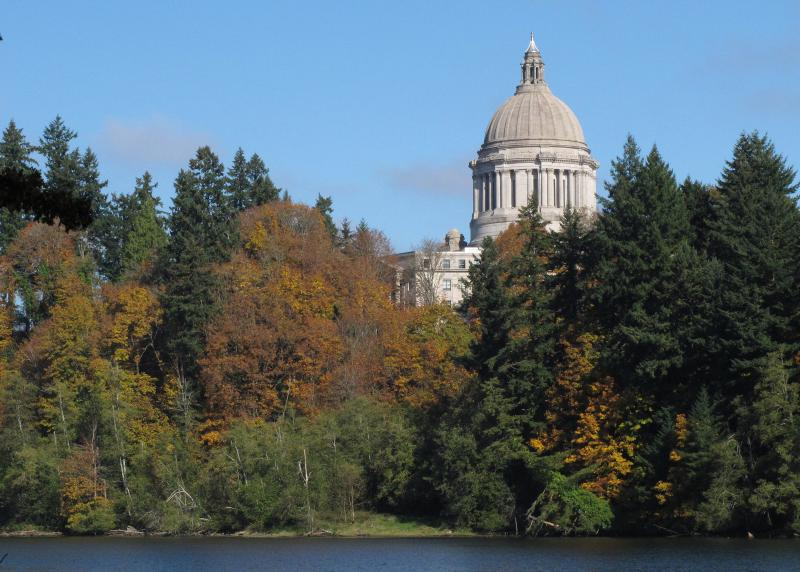 Fall foliage frames the Washington State Capitol on Tuesday, Oct. 22, 2013 in Olympia, Wash.