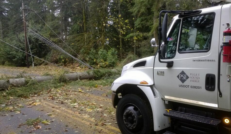 A tree fell down the storm, blocking a roadway in Sammamish, Wash.