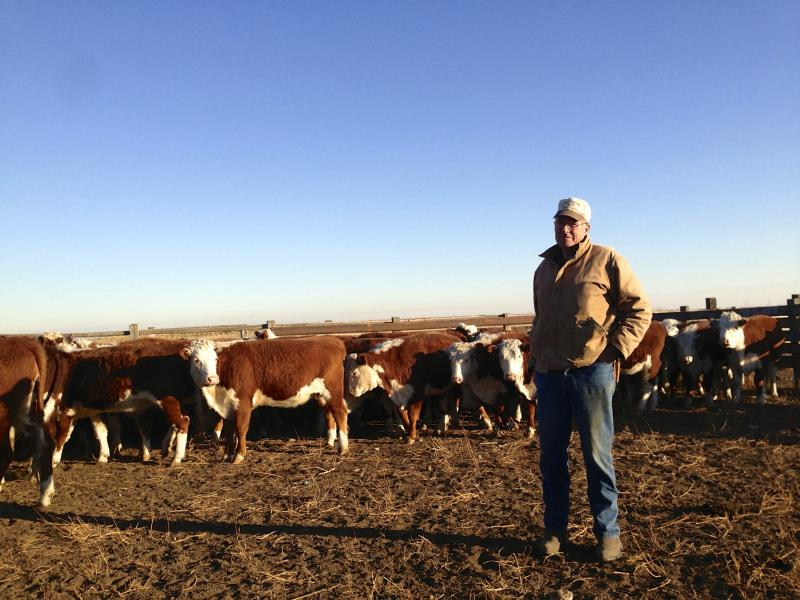 Len McIrvin checks on his Herford cattle in the cold weather in southcentral Washington outside of Patterson.