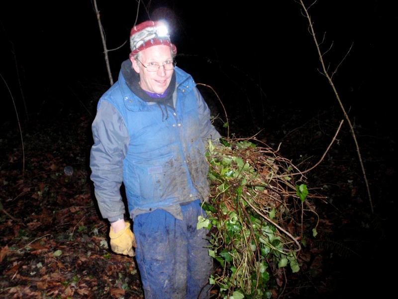 Volunteer Kevin Head clears ivy in the pre-dawn darkness.
