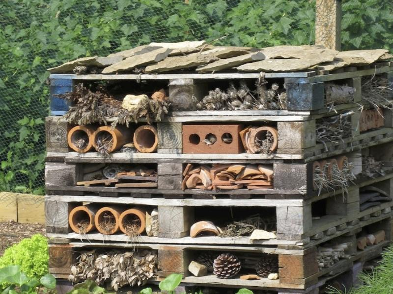 "This ""insect hotel"" at Hidcote Manor is an amalgamation of natural and recycled materials with lots of holes to make it inviting to bees, lacewings, ladybugs, reptiles and other critters that are beneficial to the garden."
