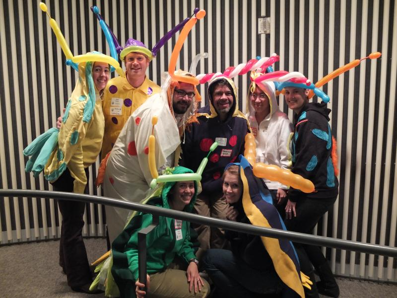 A 2013 Volunteer Officials Team dressed as nudibranchs.