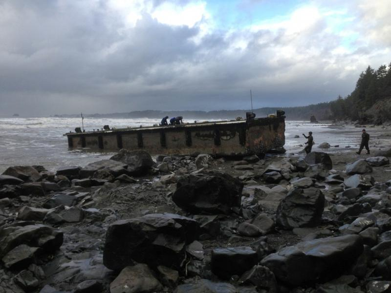 In this Dec. 21, 2012 file photo provided by the Washington Dept. of Fish & Wildlife, scientists inspect a dock that floated up on a remote stretch of wilderness beach in northwestern Washington.