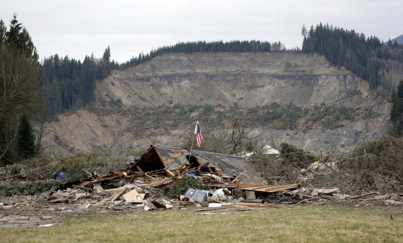 A flag, put up by volunteers helping search the area, stands in the ruins of a home left at the end of a deadly mudslide from the now-barren hillside seen about a mile behind, Tuesday, March 25, 2014, in Oso, Wash.