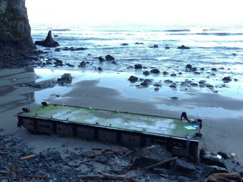 This Thursday, Jan. 3, 2013 photo provided by Olympic National Park shows a dock that washed ashore on a wilderness beach near Forks, Wash.