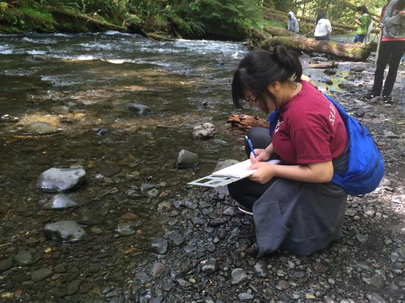 A Rainier Beach junior writes in a journal sitting on the banks of Barnes Creek. Students ran experiments on Barnes Creek Tuesday in preparation for a longer visit to the Elwha River later in the week.