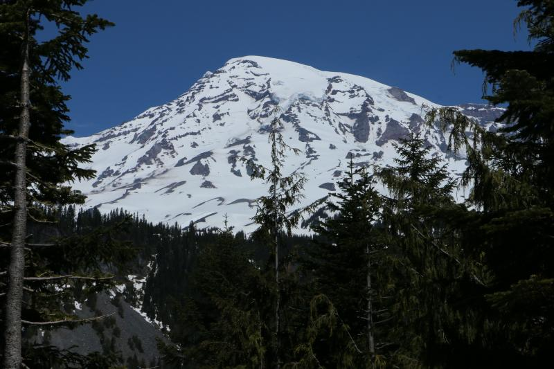 Mount Rainier is seen in the distance from a viewpoint within Mount Rainier National Park on Sunday, June 1, 2014.