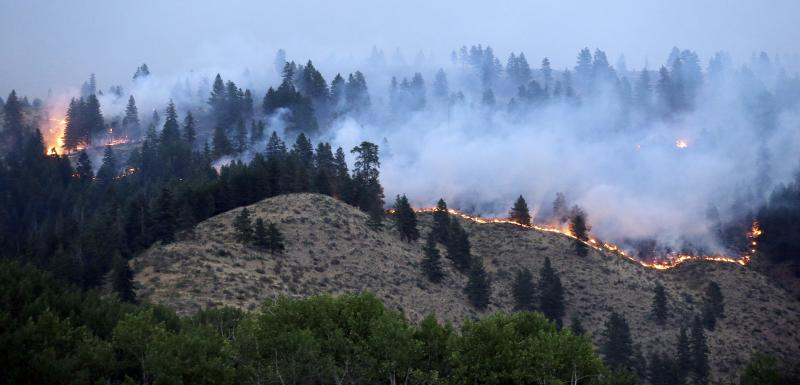 A line of fire snakes along a hillside at dusk Friday, July 18, 2014, in Winthrop, Washington.