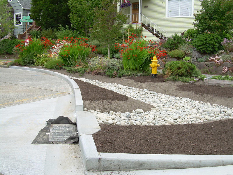 A rain garden in Seattle at 76th and Winona, installed with support from the city's Neighborhoods Projects Fund.  Scientists are just now proving that common soil mixes used in green infrastructure can be highly effective in protecting wildlife.