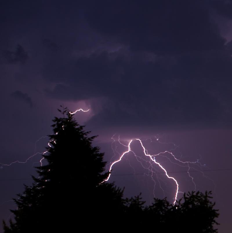 """Don't stand under a tree if you want to be safe in a lightning storm, says KPLU weather expert Cliff Mass. Where to be? """"Your car is probably your best bet,"""" he says."""