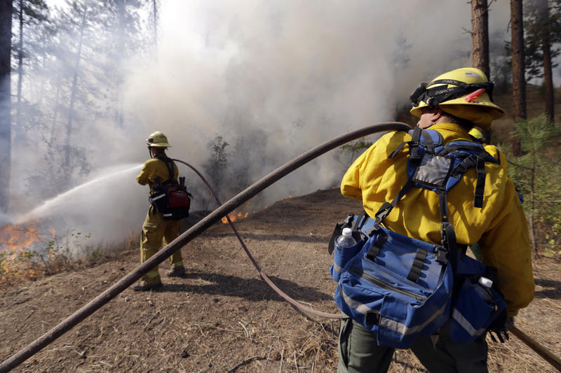 Firefighters hose the edge of a controlled fire.