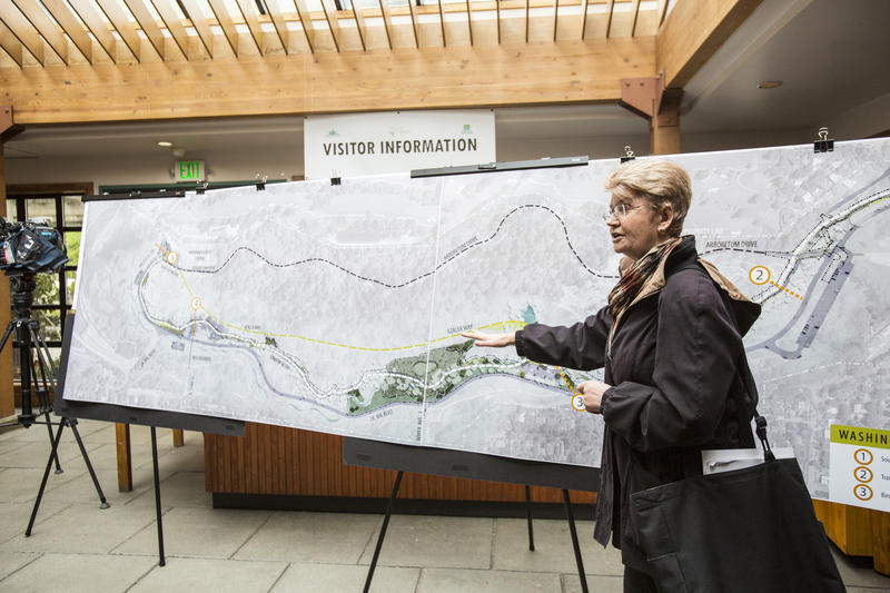 Paige Miller, executive director of the Arboretum Foundation, with a map in the Washington Park Arboretum's Graham Visitor Center showing a sketch of the loop trail, which will cover 2.5 miles when complete.