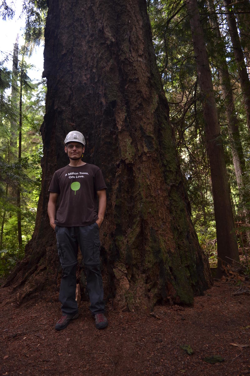 Mik Miazio at the base of the tallest tree in Tacoma's Point Defiance Park.