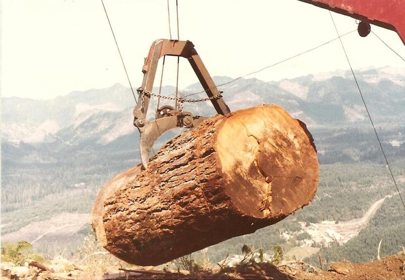 Many people who grew up in Grisdale remember it as a child's paradise. But for loggers, the work was sometimes deadly.