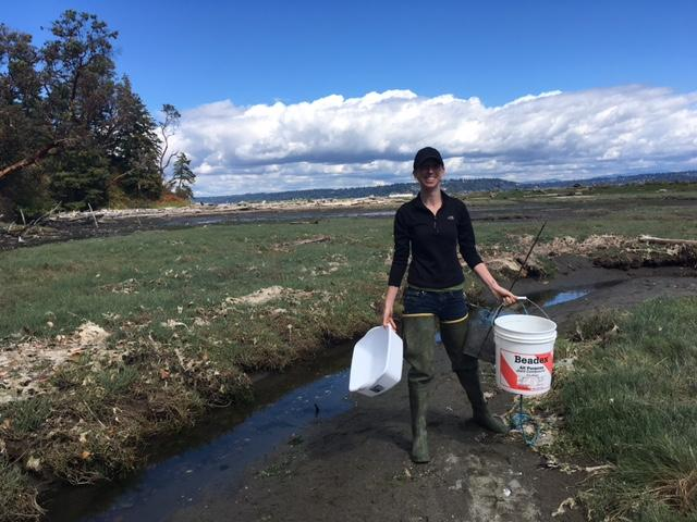 Sea Grant Crab Team program coordinator Emily Grason retrieving traps from Point Heyer. They set them once a month from April- September.