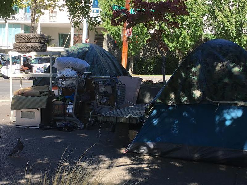 Under new rules proposed by the City of Seattle, advance notice would be required before clearing even smaller encampments of just one or two tents, like this one. Lost property would also be delivered to homeless individuals seeking it after a sweep.
