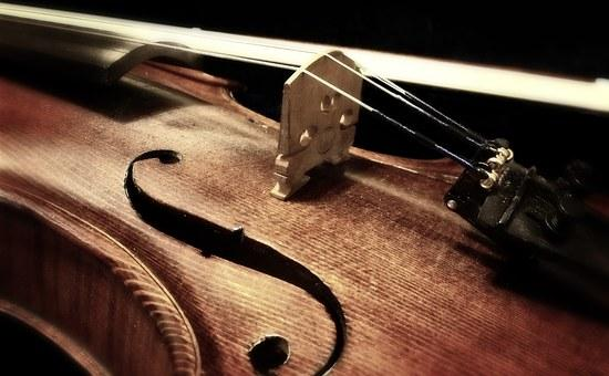 violin, up close and personal