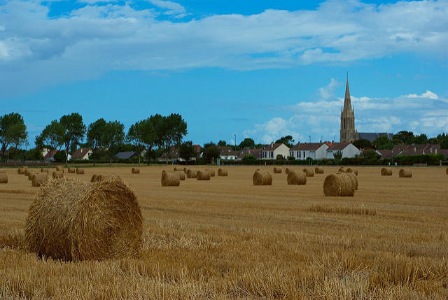 The countryside near Bernières sur Mer, Normandy.