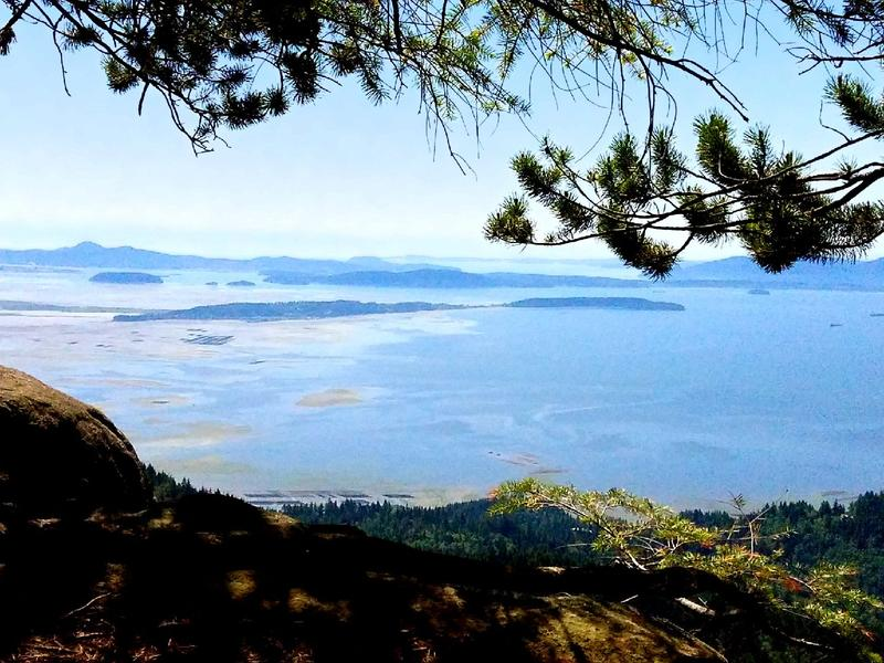 Salish Sea, from Oyster Dome, south of Bellingham
