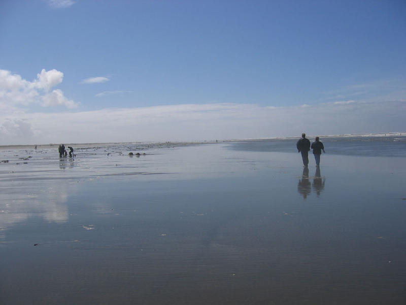 Beaches at Ocean Shores will be among those  cleaned up on July 5th.