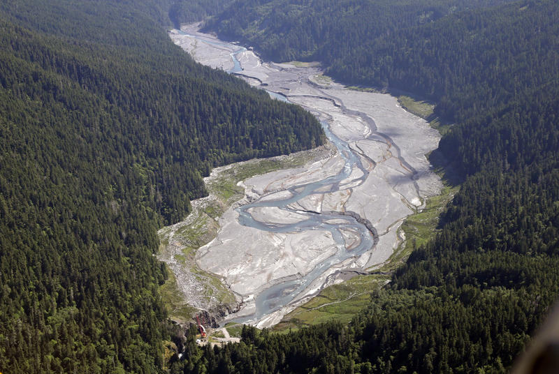 In this June 3, 2014 aerial photo, the Elwha River flows freely through what was Lake Mills and past the old Glines Canyon Dam, bottom, in the Olympic National Park near Port Angeles, Wash.