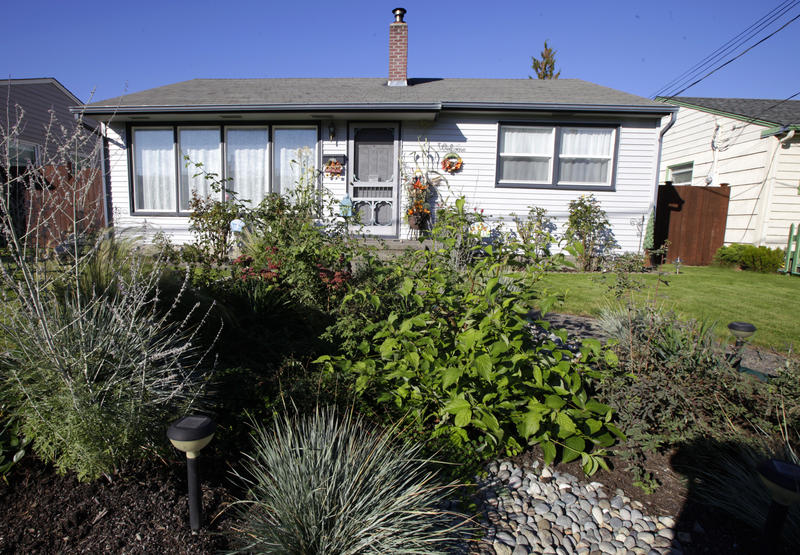 """A """"rain garden"""" is shown in a residential area of Puyallup, in  Oct 2011.  This is one of many techniques used to soak up rain and stormwater runoff as a strategy to keep it from washing pollutants into rivers and Puget Sound."""