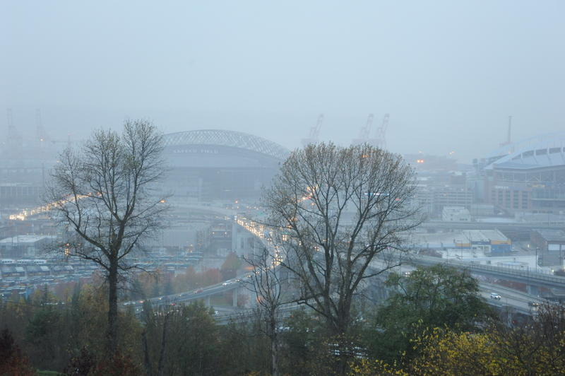 Evening view from Beacon Hill, looking through trees towards the fogged in Port of Seattle.