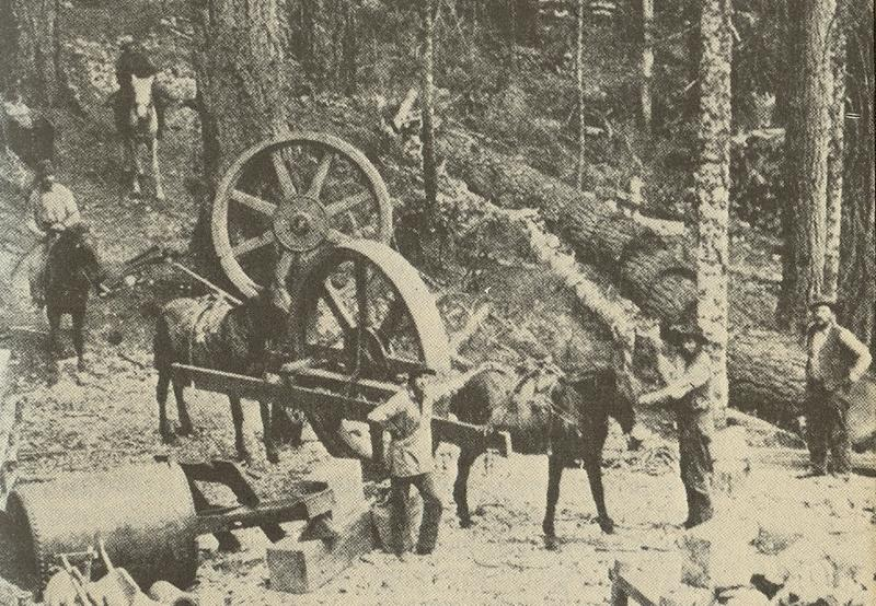 From 1889 to 1907, prospectors mined the hills of Monte Cristo in search of gold and silver.
